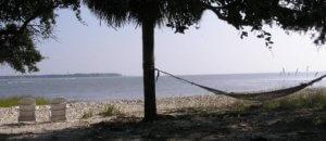 hp-hammock